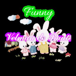 Embroidery sticker; Rabbit Kiddyard