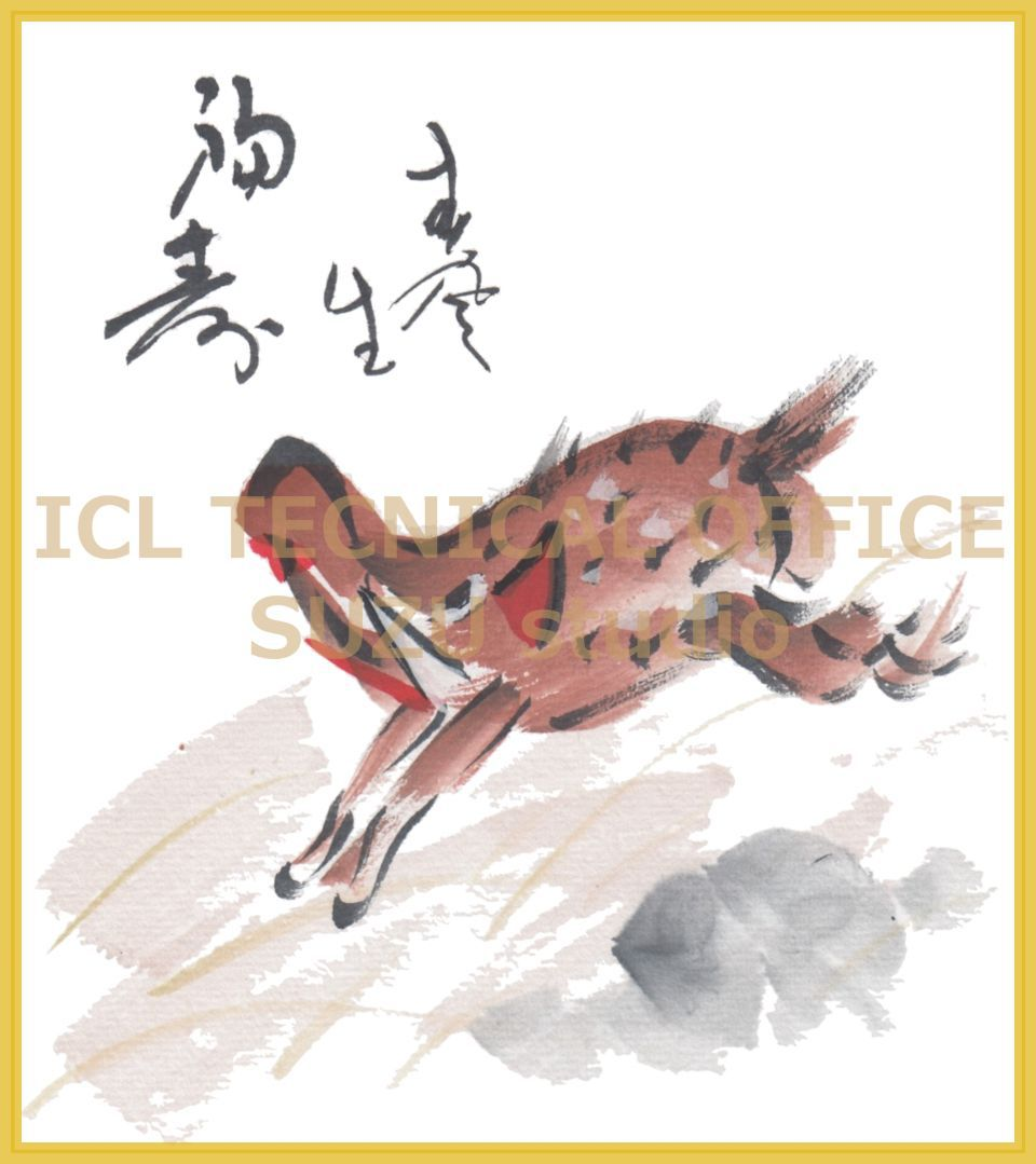 Year of the Boar('亥年')