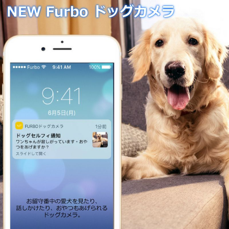 NEW Furbo ドッグカメラ