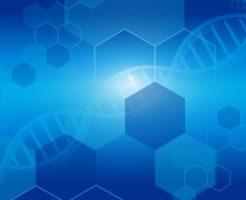 柴犬・ペットの遺伝子検査って必要?