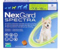 ネクスガードスペクトラ 中型犬用