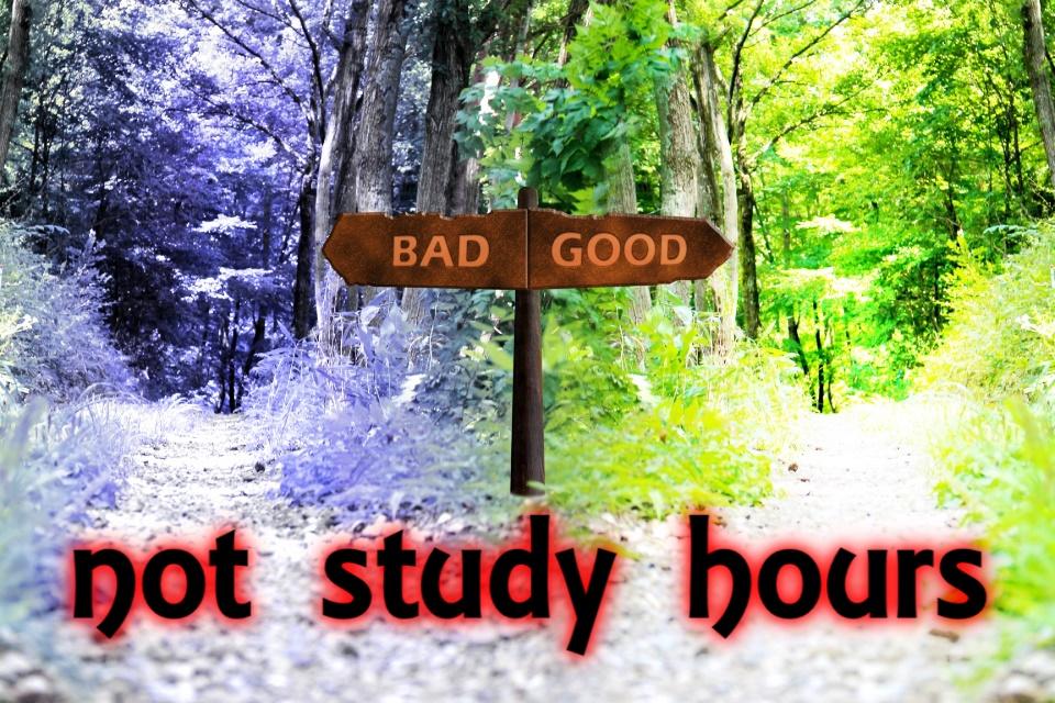 成績は勉強時間に比例しない