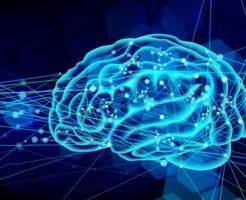 俗流脳科学・大衆心理学・大衆AIの罠