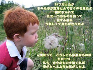 花に寄せて-星野富弘と三橋節子