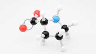 プロリン/アミノ酸