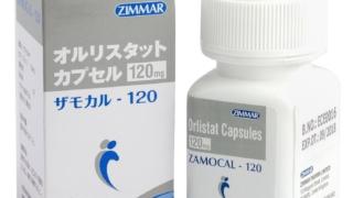 ザモカル(Zamocal) 120mg | 肥満症治療薬